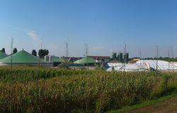 Ecofuturo, biogas ed elettrico per una mobilità pulita