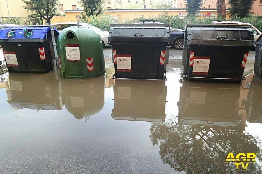 Municipio X, verde pubblico al collasso, denuncia di Monica Picca (Lega)