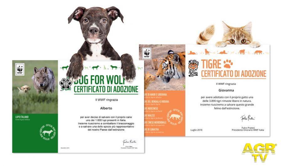 WWF per Natale adotta...una tigre